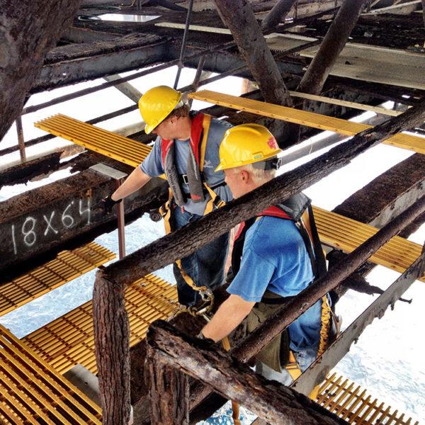 volunteers-lower-level-restoration